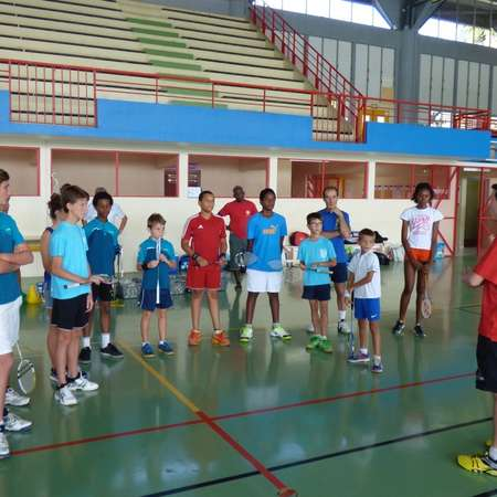 Stage de badminton 12/2014